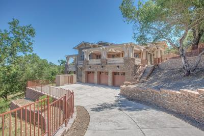 Santa Clara County Single Family Home For Sale: 15675 Gum Tree Ln