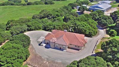 SAN JUAN BAUTISTA Single Family Home For Sale: 2300 Salinas Rd