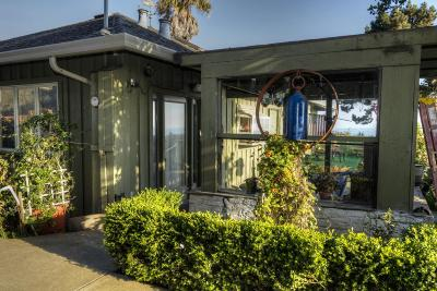 Pescadero Single Family Home For Sale: 390 Pigeon Point Rd