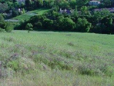 SARATOGA Residential Lots & Land For Sale: 0 Mt Eden Rd