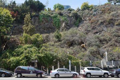SAN FRANCISCO Residential Lots & Land For Sale: 1235 Sansome St