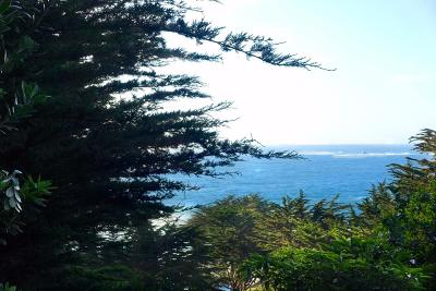 Carmel Highlands Single Family Home For Sale: 164 Spindrift Rd A