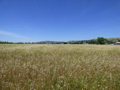 MORGAN HILL Residential Lots & Land For Sale: 0 Barrett Ave