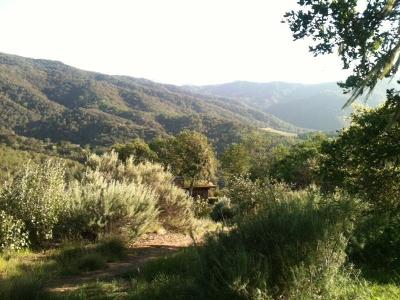 Carmel Valley Single Family Home For Sale: 20785 Cachagua Rd