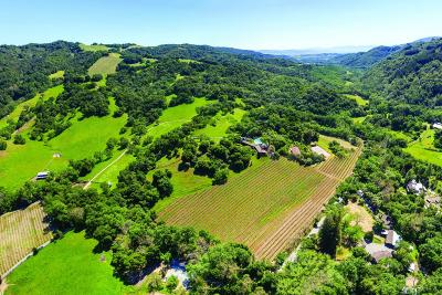 GILROY Single Family Home For Sale: 6500 Redwood Retreat Rd