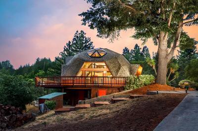 Boulder Creek Single Family Home For Sale: 235 Dorrance Rd