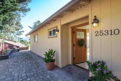 Carmel Valley Single Family Home For Sale: 25310 Tierra Grande Dr