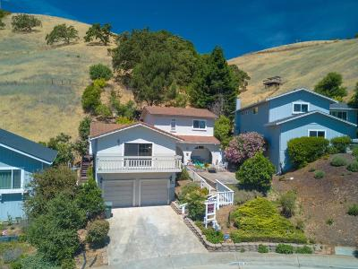 Morgan Hill Single Family Home For Sale: 595 Bonnie View Court