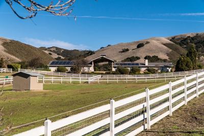 SALINAS Single Family Home For Sale: 350 San Benancio Rd