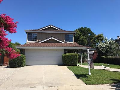 SAN JOSE Single Family Home For Sale: 365 Los Pinos Way