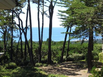 Pebble Beach Condo For Sale: 54 Ocean Pines Ln