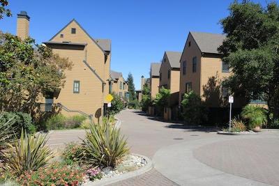 BELMONT Single Family Home For Sale: 1 Loma Vista Ln