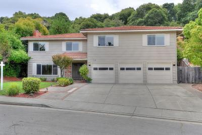 SAN JOSE Single Family Home For Sale: 1196 Nikette Way