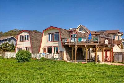 Half Moon Bay Single Family Home For Sale: 207 Washington Blvd