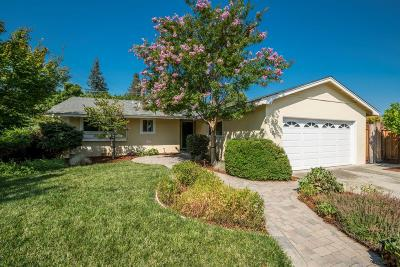 LOS GATOS Single Family Home For Sale: 209 Mary Alice Dr