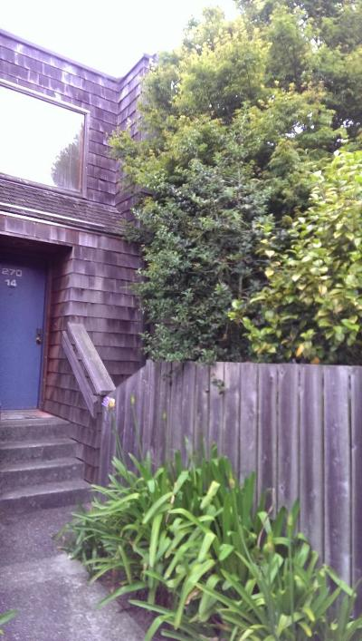 Pacifica Townhouse For Sale: 270 Beachview Ave 14