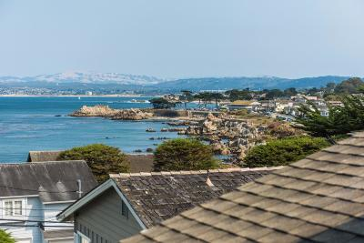 Pacific Grove Single Family Home For Sale: 876 Del Monte Blvd