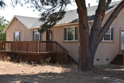 HOLLISTER Single Family Home For Sale: 2740 Southside Rd