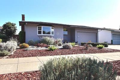 SAN JOSE Single Family Home For Sale: 318 Swaps Dr