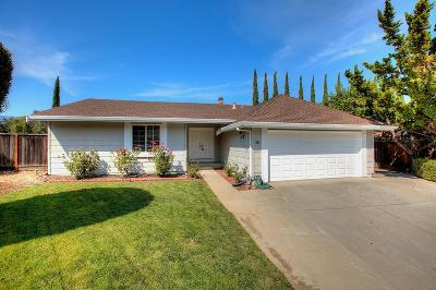 San Jose Single Family Home For Sale: 6813 Bluffwood Ct