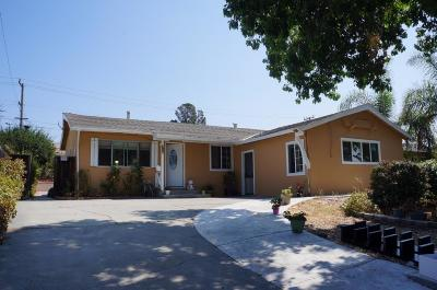 MILPITAS Single Family Home For Sale: 418 S Temple Dr