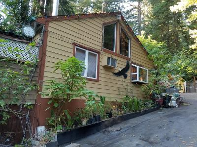 Boulder Creek Single Family Home For Sale: 229 Madrona Rd