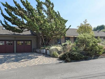 Portola Valley Single Family Home For Sale: 96 Hillbrook Dr