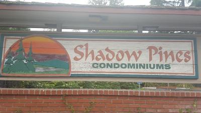 SAN JOSE Condo For Sale: 3327 Shadow Park Pl