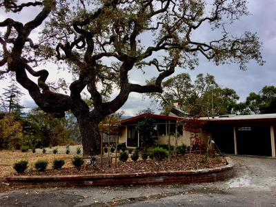PALO ALTO Single Family Home For Sale: 2265 Old Page Mill Rd