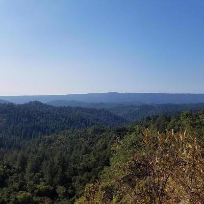 LOS GATOS Residential Lots & Land For Sale: 1475 White Rock