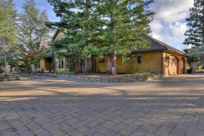Los Altos Hills Single Family Home For Sale: 26052 W Fremont Rd