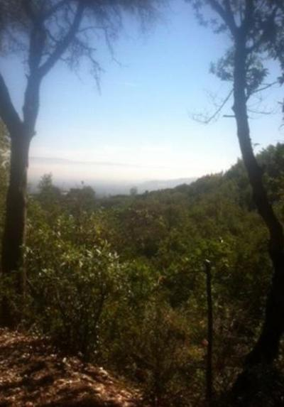 Los Gatos Residential Lots & Land For Sale: 0 Little Brook