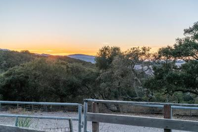 Carmel Valley Single Family Home For Sale: 27104 Laureles Grade Rd
