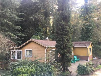 Boulder Creek Single Family Home For Sale: 390 Brook Dr