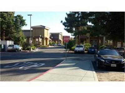 Santa Clara County Business Opportunity For Sale: 979 Story Rd 7051