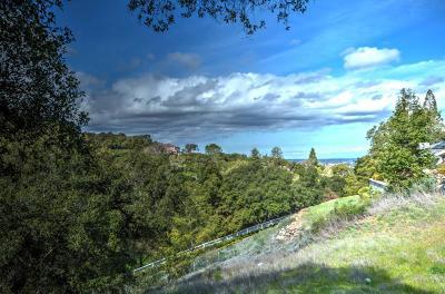 Los Gatos Residential Lots & Land For Sale: 16084 Greenridge Ter