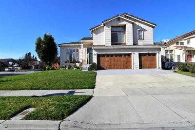 GILROY Single Family Home For Sale: 9307 Rodeo Dr