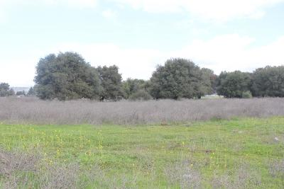 MORGAN HILL Residential Lots & Land For Sale: 1275 Tennant Avenue