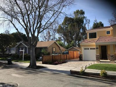 Palo Alto Single Family Home For Sale: 434 Fernando Ave