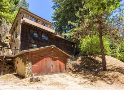 Boulder Creek Single Family Home For Sale: 333 Wooded