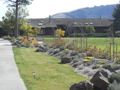 SALINAS Single Family Home For Sale: 28014 Mesa De Tierra Rd