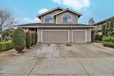 MORGAN HILL Single Family Home For Sale: 17395 Ringel Dr