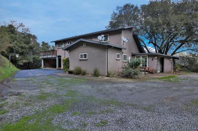 MORGAN HILL Single Family Home For Sale: 16485 Oak Glen Ave
