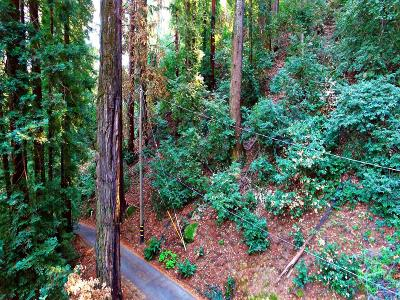 LOS GATOS Residential Lots & Land For Sale: 0 Patricia Ct