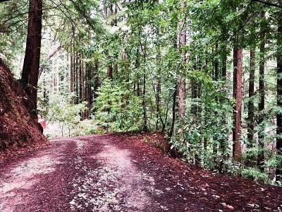 Santa Cruz County Residential Lots & Land For Sale: 0 Little Buck Rd