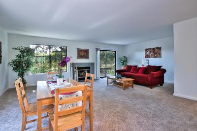 Santa Cruz Condo For Sale: 61 S Branciforte Ave