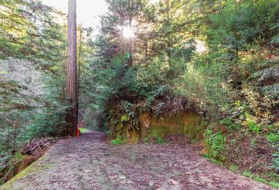 Santa Cruz County Residential Lots & Land For Sale: 10833 Highway 9
