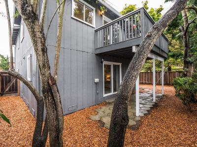 Santa Cruz County Single Family Home For Sale: 501 Gertrude Ave