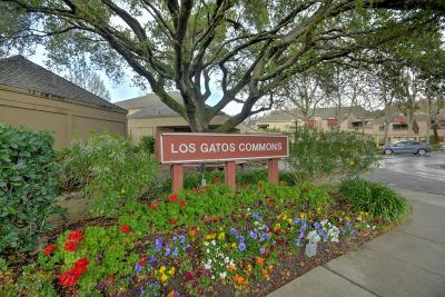 Los Gatos Condo For Sale: 443 Alberto Way B219