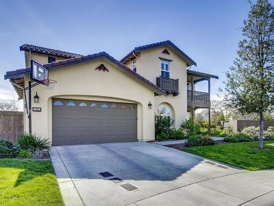 El Dorado Hills Single Family Home For Sale: 500 San Marco Pl